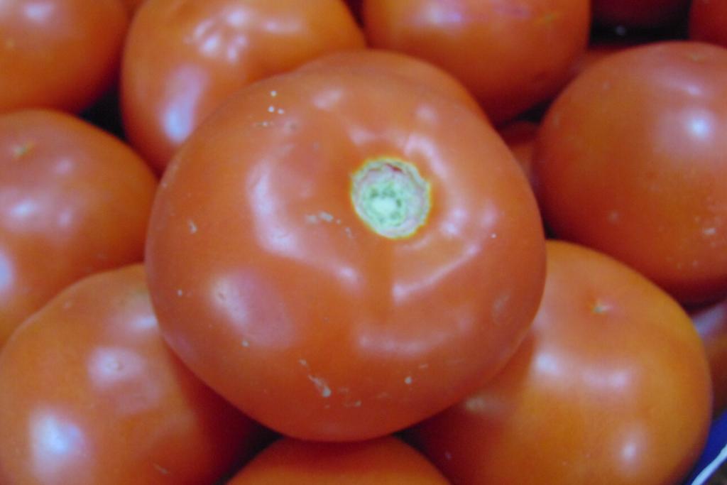 zdrav paradajz